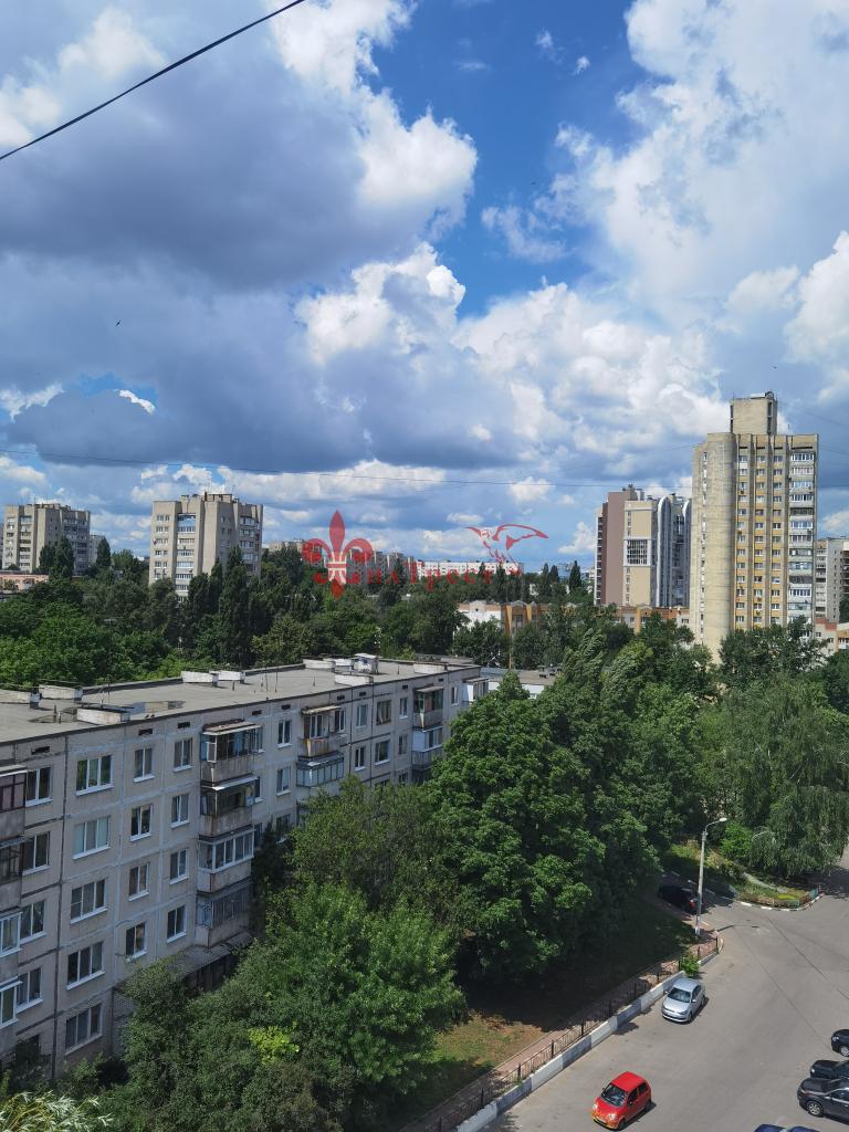 Белгород, Губкина ул